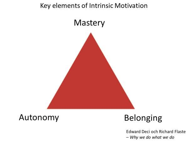 Motivation Three Key Elements for Intrinsic Motivation